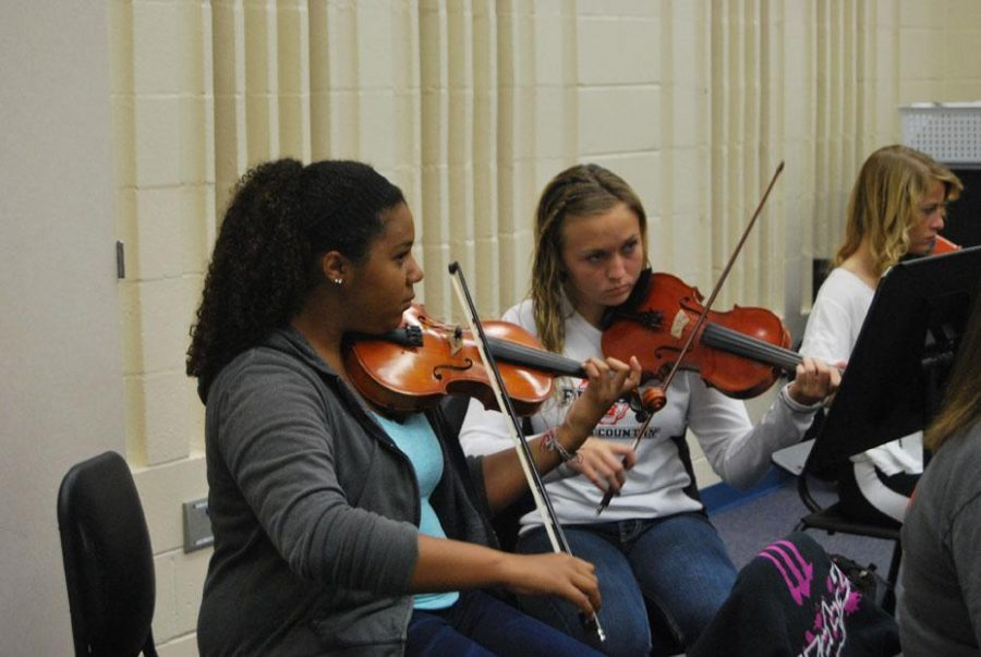 Orchestra concert reviewed by participants
