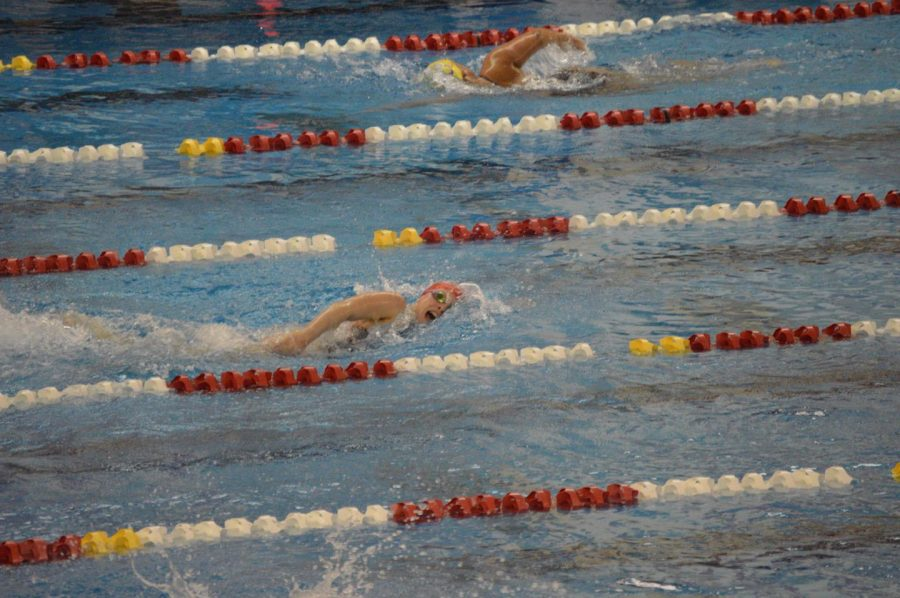 Junior+Lauren+Edelman+swims+vs.+Greenfield-Contral+High+School+on+Jan.+23.+Photo+by+Audree+Logan+and+Liza+Fortoto.