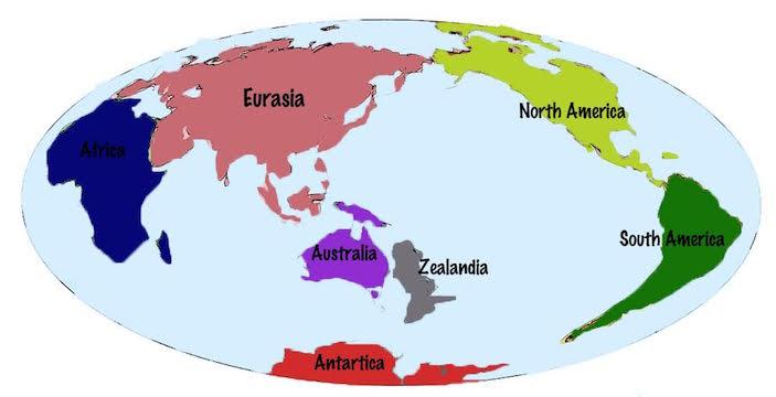 Location of Zealandia based on BBC. Graphic by Carolina Puga Mendoza