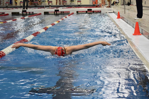 An FHS swimmer swims the butterfly stroke in the FHS natatorium.