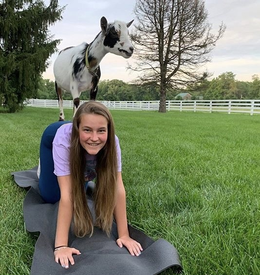 Sophomore Erin Kemp does a yoga pose with a goat while attending a class at Happy Goat Lucky in Noblesville.