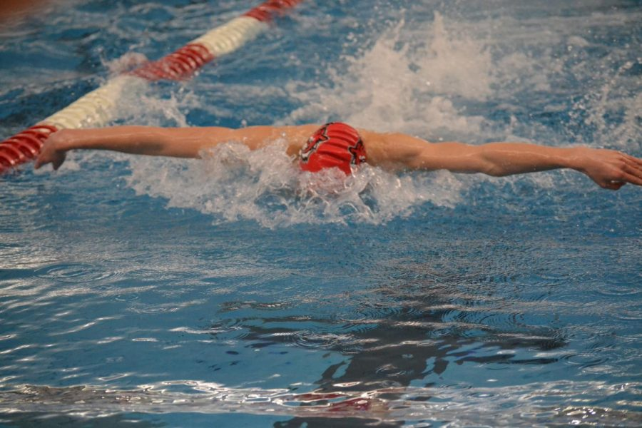 Senior Bruno Kitazuka takes a stroke in the 100 butterfly. He finished fourth in the final.