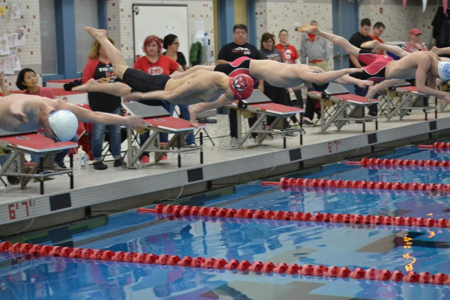 Boys dive in during 100m Freestyle at the Feb. 22 sectional at FHS.